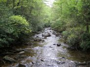 Upstream view from bridge of Jacob Fork