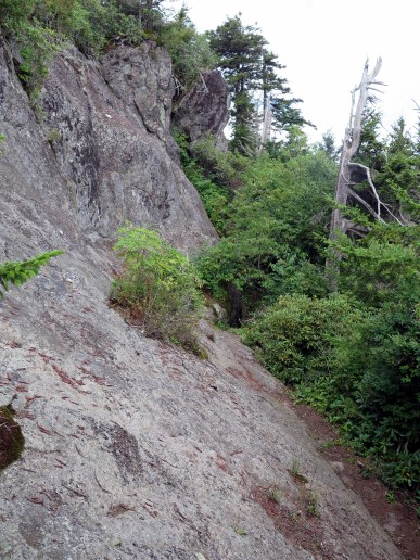 Black Mountain Crest Trail becomes a narrow, rocky footpath