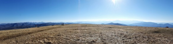 Southern panorama from Max Patch