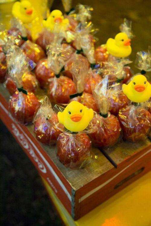 cm-ducks