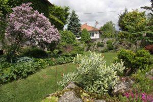 Skalničkářská zahrada nemusí být jen sbírkou skalniček