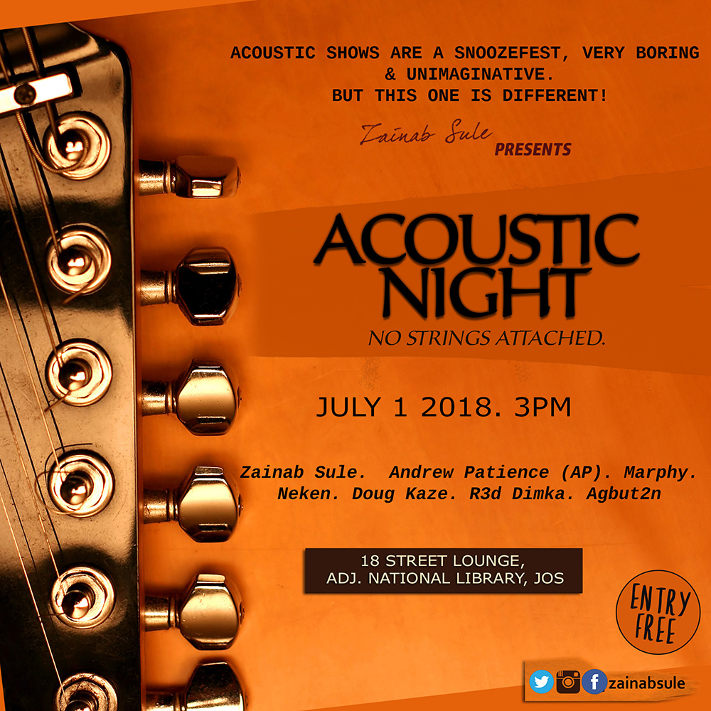 Zainab Sule Acoustic Night