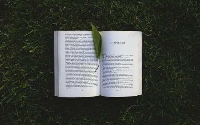 Berhentilah Membaca!