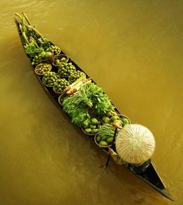 barque-verte
