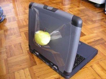 apple false