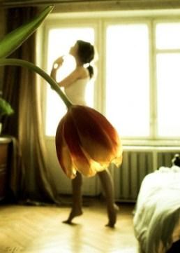 danseuse fleur