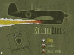 2010-05-04_steambirds081345