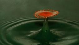 goutte-eau-photo-331904