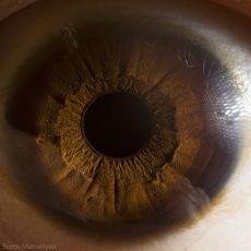 your_beautiful_eyes_03