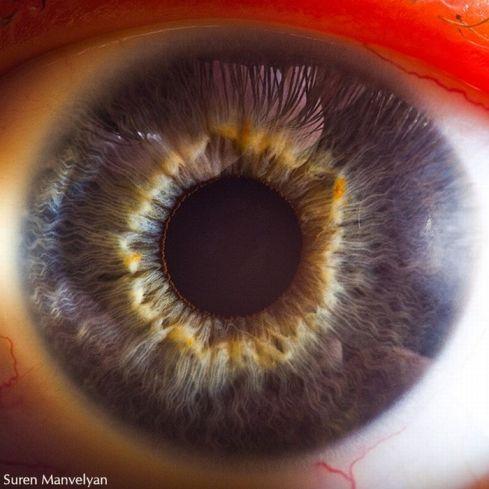 your_beautiful_eyes_07