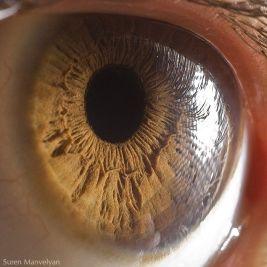 your_beautiful_eyes_10