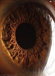 your_beautiful_eyes_11