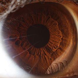 your_beautiful_eyes_12
