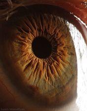 your_beautiful_eyes_15