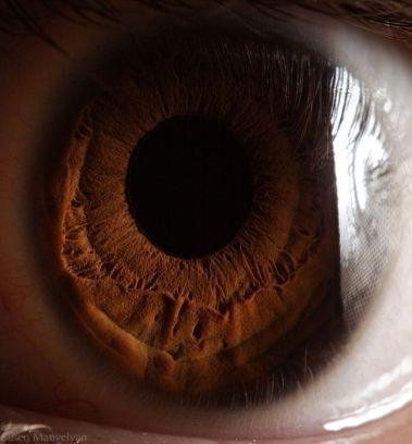 your_beautiful_eyes_19