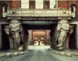 elephant colonnes