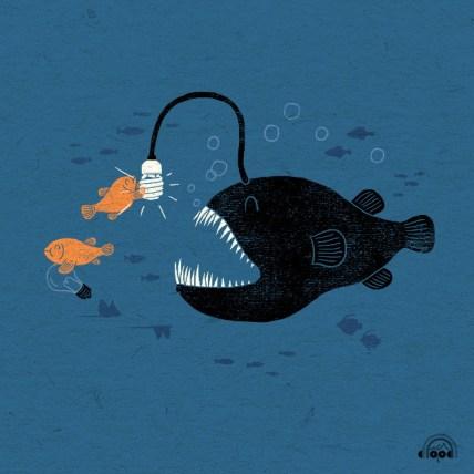 ampoule eco poisson