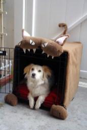 cage a chien chat par Sappymoosetree