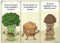 legumes jeu