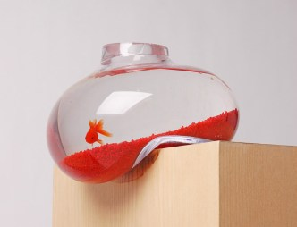 psalt design bubble tank fish tank