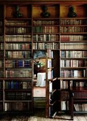 porte cachee bibliotheque