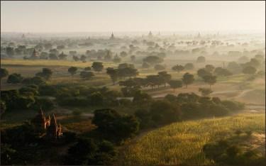 paysage brume foret