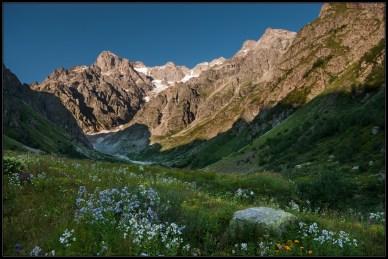 paysage montagne prairie