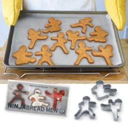 ninja biscuit