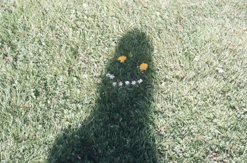 monstre ombre pelouse