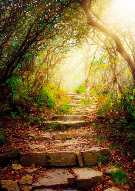 Stairs with sun beams