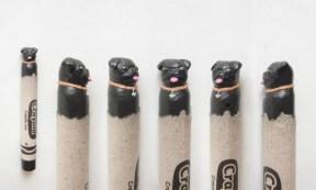 crayon couleur 3