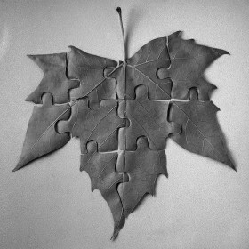 feuille puzzle