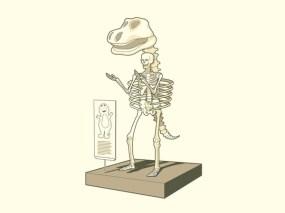 squelette casimir
