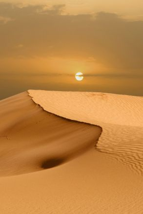 desert sable