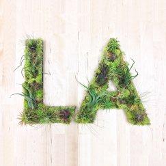 la lettre verdure