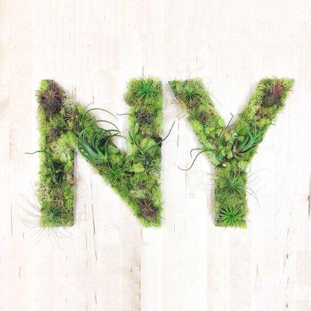 ny lettres verdure