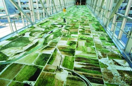 tapis sol google maps