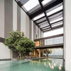piscine arbre archi