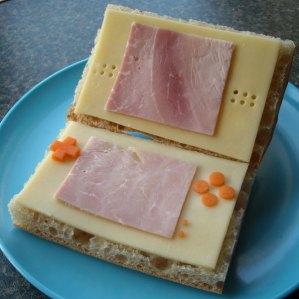 sandwish nintendo ds