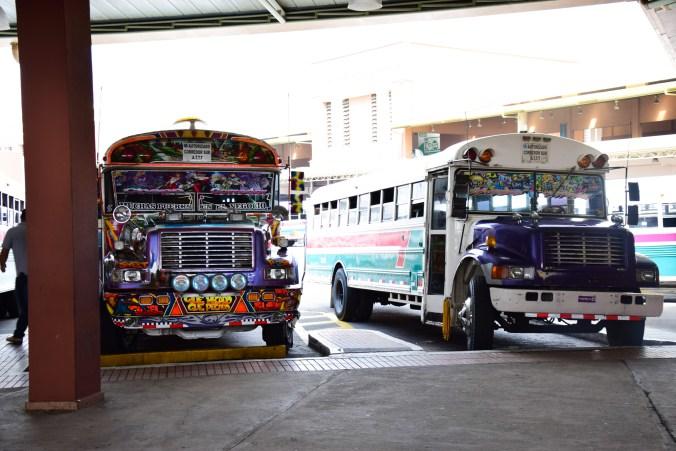 autobusy panama
