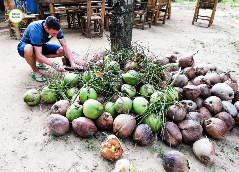 kokosy filipiny