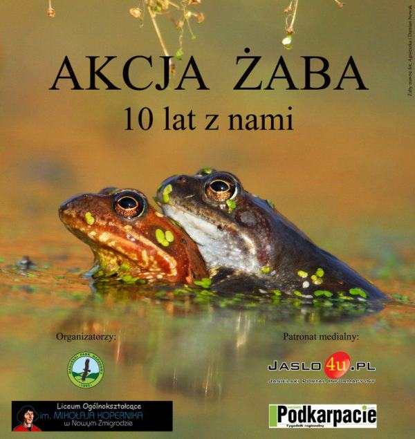 plakat akcja zaba II www