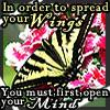butterfly from anon