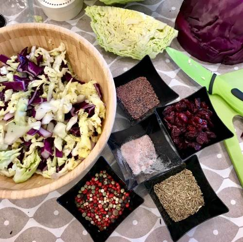 Ingredientes para hacer fermentados