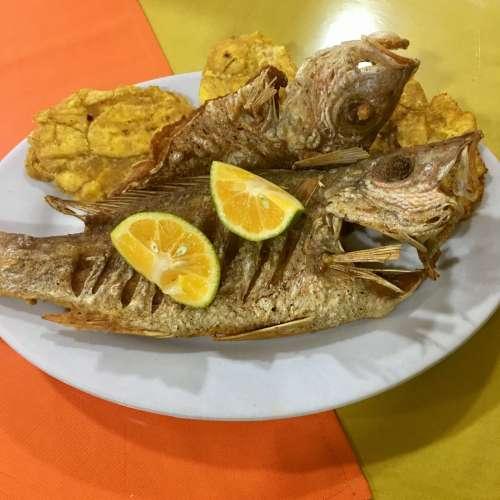Mojarra, pescado de río