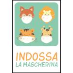 Targa: INDOSSA LA MASCHERINA art. 35557