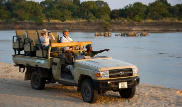 Flatdogs Camp - Game Drive