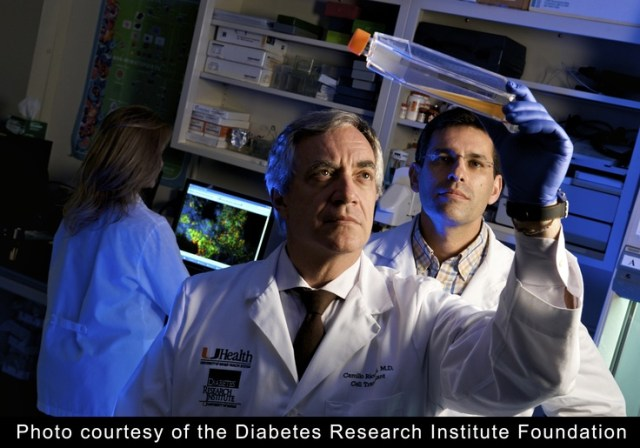Diabete: primo trapianto biotech di cellule pancreatiche