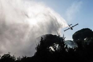 Fiumicino, Incendio nella Pineta il video