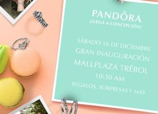 PANDORA Concepción